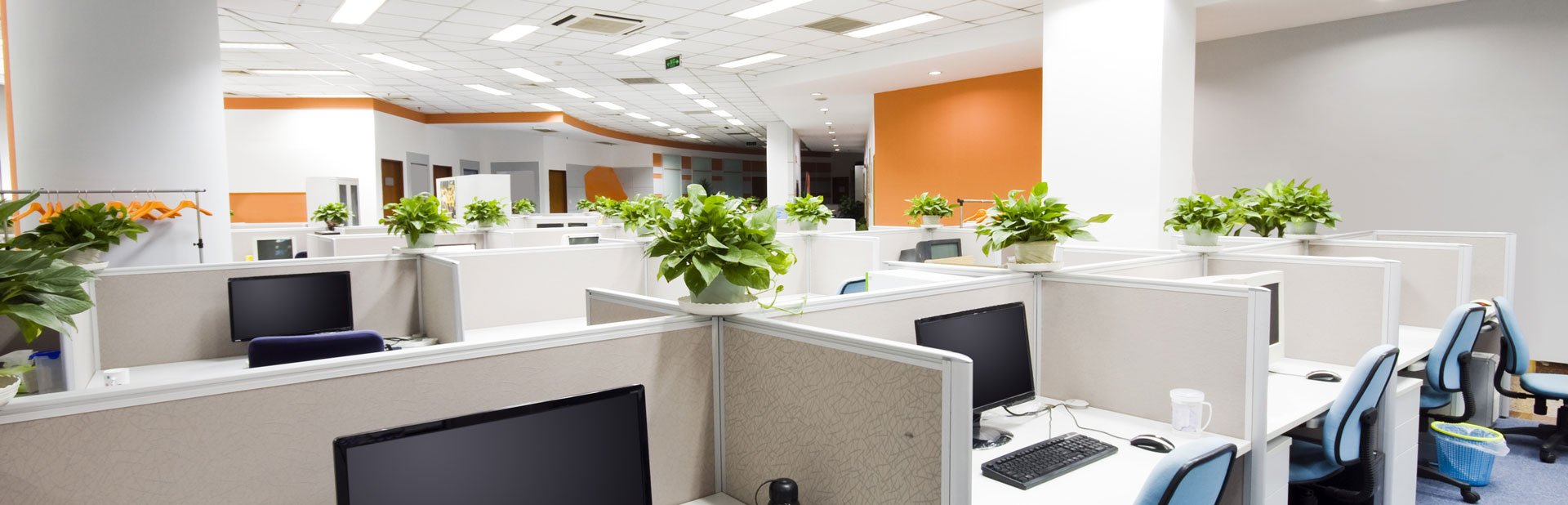 Office Lighting and Electrical Work